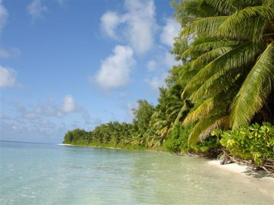Desroches Island: Beach you can cycle to in 20 mins