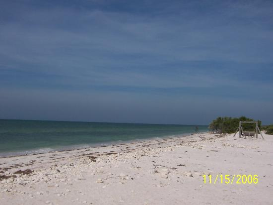 Dunedin, FL: Awesome sand & sun AND FUN!