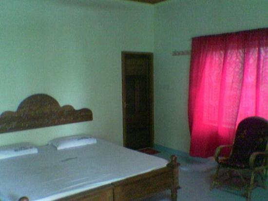 Palm Ayurvedic Beach Resort: Room2