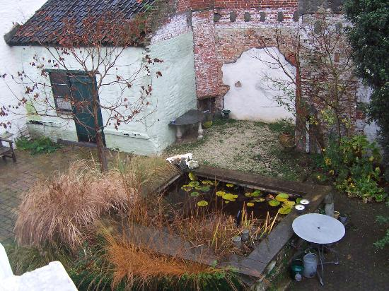 Absoluut Verhulst: December at our B&B