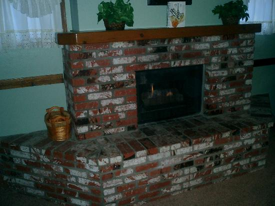 Sleepy Forest Cottages: fireplace