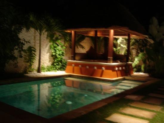 Novotel Bali Benoa: The Pool. Mine, all mine