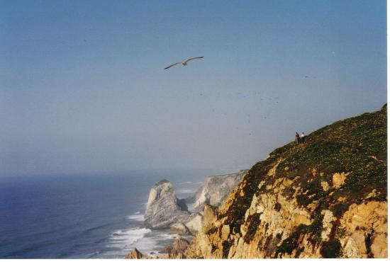 Praia da Rocha, Portugal: Land's End, Algarve