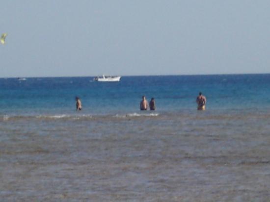 Sea World: beach area