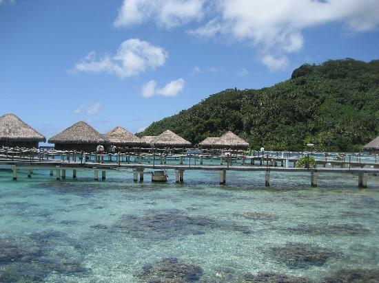 Royal Huahine Photo