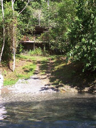 Bosque del Rio Tigre: View of the lodge