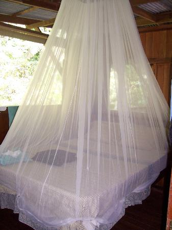Bosque del Rio Tigre: Bedroom