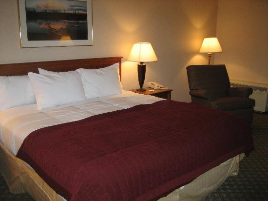Comfort Inn & Suites Syracuse Airport Photo