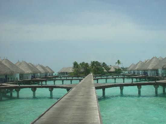 Four Seasons Resort Maldives at Kuda Huraa: Water bungalows