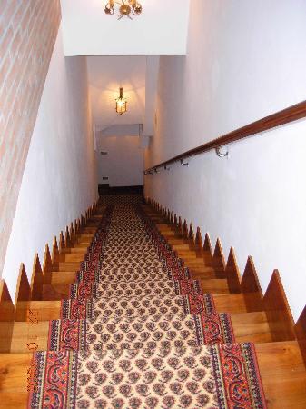 Ca' Alexander: Stairs