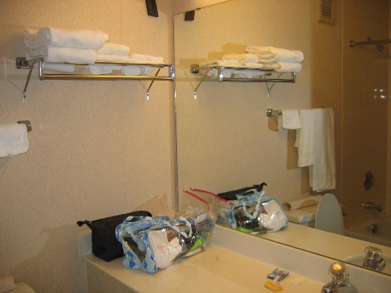 Holiday Inn Great Falls : Bathroom