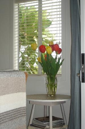 The Boatshed: Fresh flowers in my room, (and everywhere else)