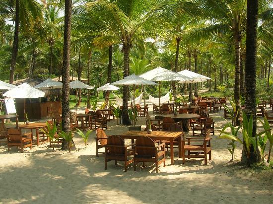Txai Resort Itacare: Beautiful spot for lunch