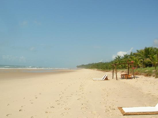 Txai Resort Itacare: The beach at Txai