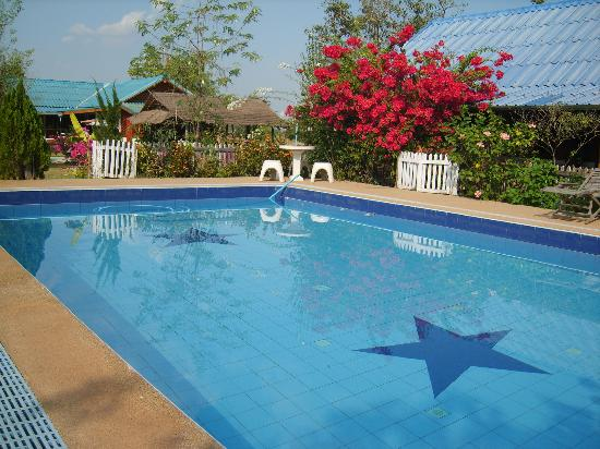 Mountain View Guest House : pool