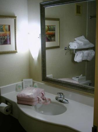 Cleveland Airport Hotel: Bathroom