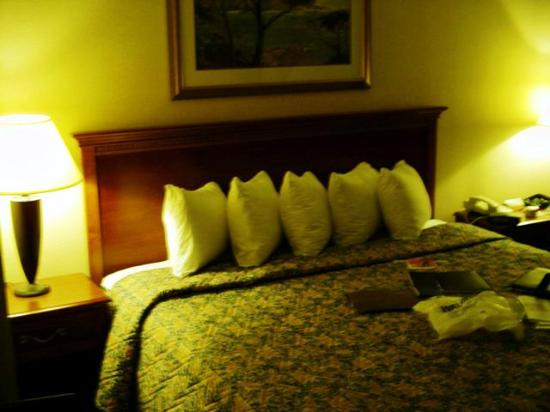 Holiday Inn Cleveland Airport: bed