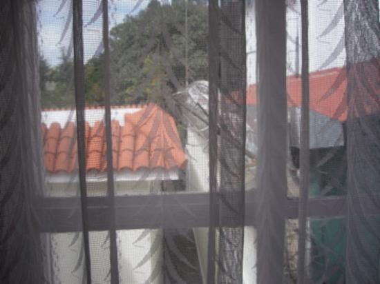 La Casa Grande: window view