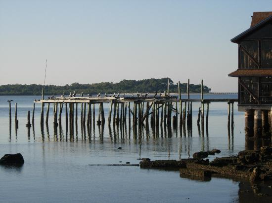 dock at Cedar Key