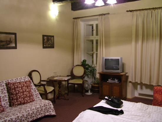 Hotel U Tri Bubnu : Room (