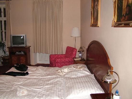 Hotel U Tri Bubnu : Room 9