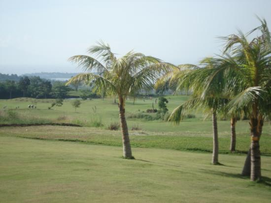 Thunderbird Resorts - Rizal: Golf Course