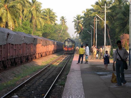 Heritage Village Resort & Spa Goa : Train to the waterfalls
