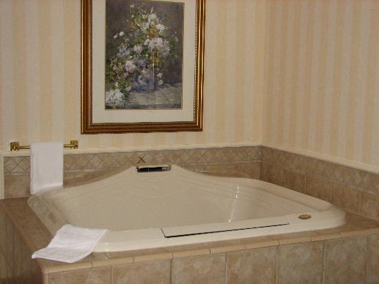 Hampton Inn & Suites Buffalo Downtown: Jacuzzi Room