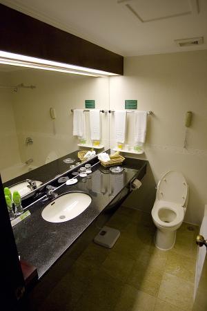 China Mayors Hotel : Bathroom