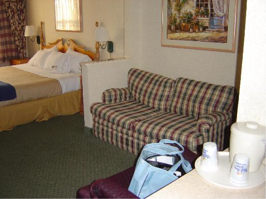 Holiday Inn Express & Suites Dallas-Addison: Couch