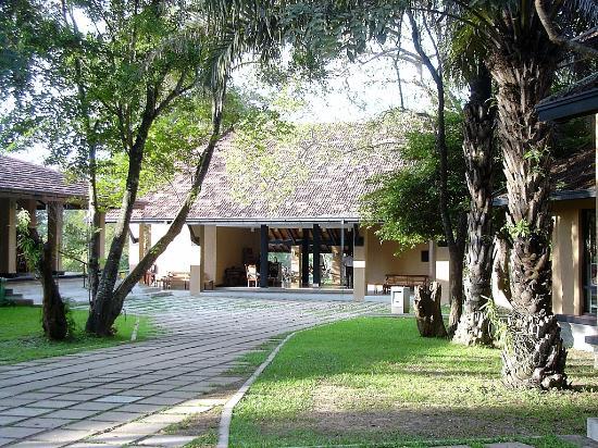 Habarana Village by Cinnamon : Reception area