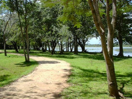 Habarana Village by Cinnamon: Path along lakeside grounds
