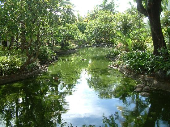 One&Only Le Saint Geran - TEMPORARILY CLOSED: The Gardens and grounds