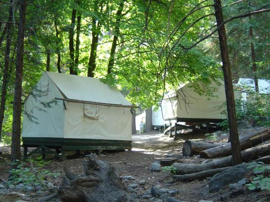 The serenity of curry village cabins picture of half for Half dome tent cabins