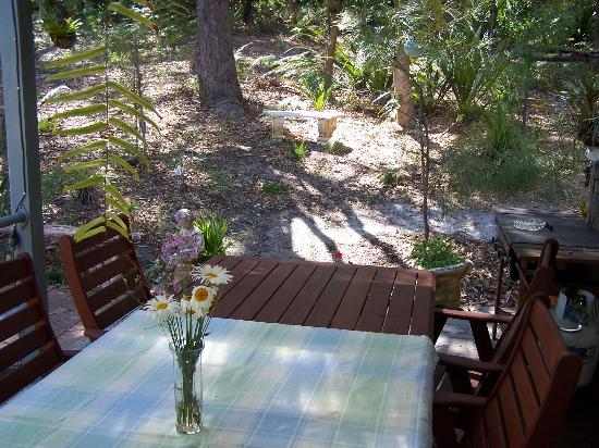 Nelson Bay Bed and Breakfast: Patio table with surrounding trees