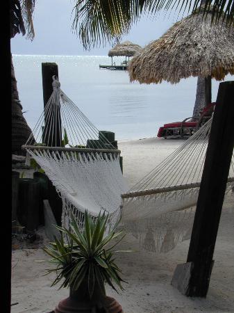 Capricorn Resort: Not too shabby?!
