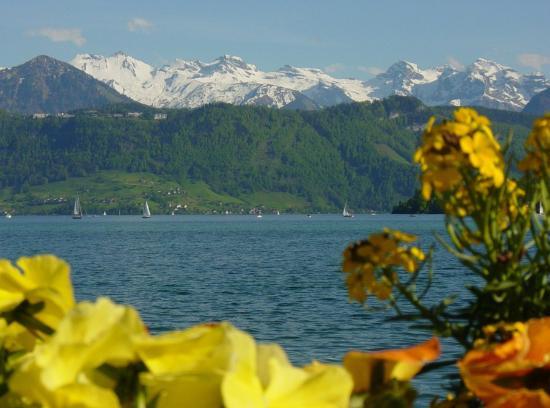 Hotel Pension Rosli Luzern Schweiz