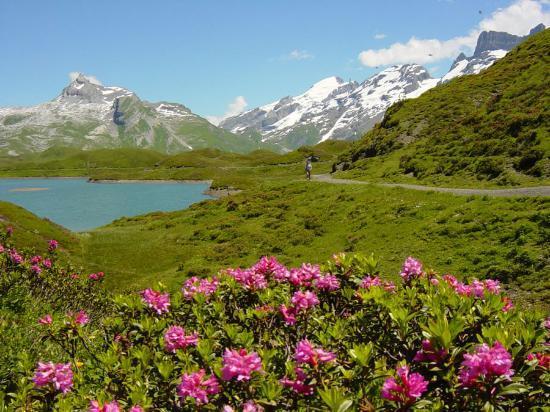 ลูเซิร์น, สวิตเซอร์แลนด์: Melchsee-Frutt near Lucerne