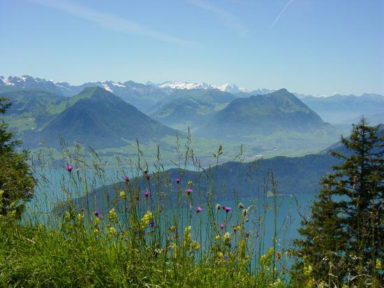 Lucerna, Svizzera: Summer view from Mt. Rigi near Lucerne