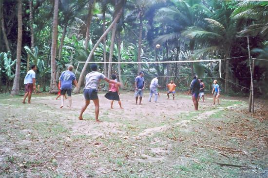 Namena Island Dive Resort: Volleyball game with staff and guests, we were spectators!