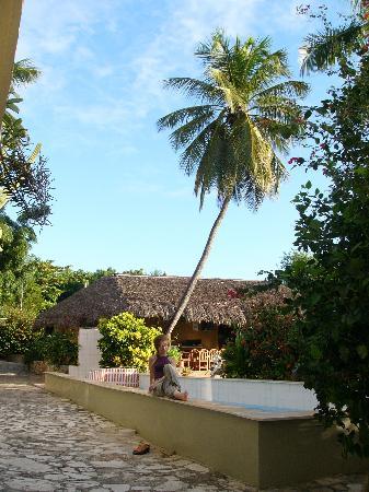 Hotel el Quemaito : The pool