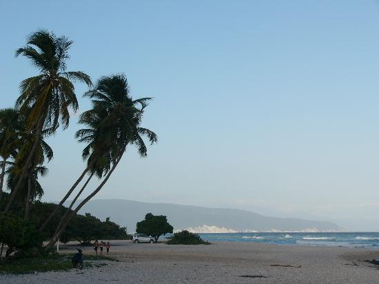 Hotel el Quemaito : The beach
