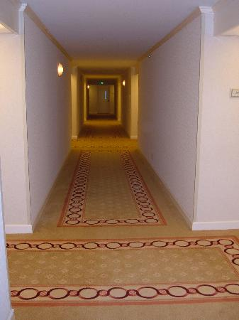 Miami Marriott Dadeland: Hallway of renovated floor