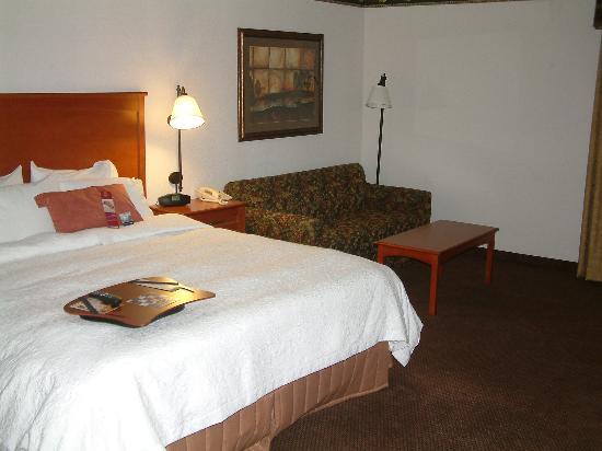Hampton Inn Fort Smith: King room