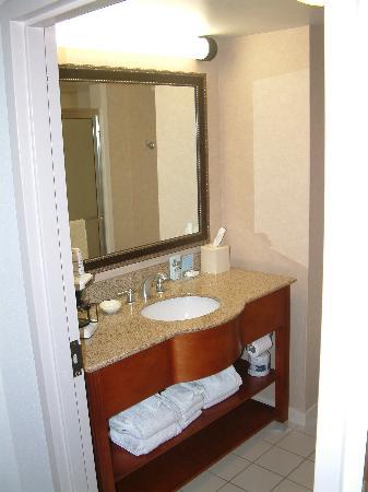 Hampton Inn Fort Smith: Stylish bathroom