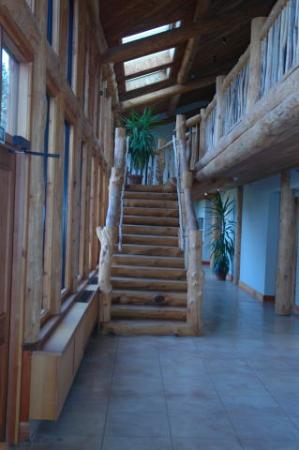 Fiordland Lodge: Staircase to bedrooms
