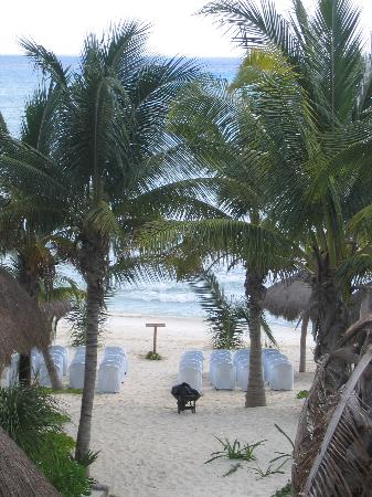 Mahekal Beach Resort: View of the palm arch for our wedding from our balcony