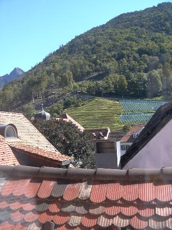 Ambiente Hotel Freieck: view from our room