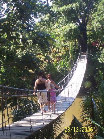 Henry Morgan Beach Resort : Gumba Limba Park