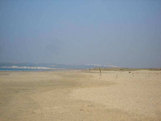 Gran Sol Hotel: Beach at Zahara